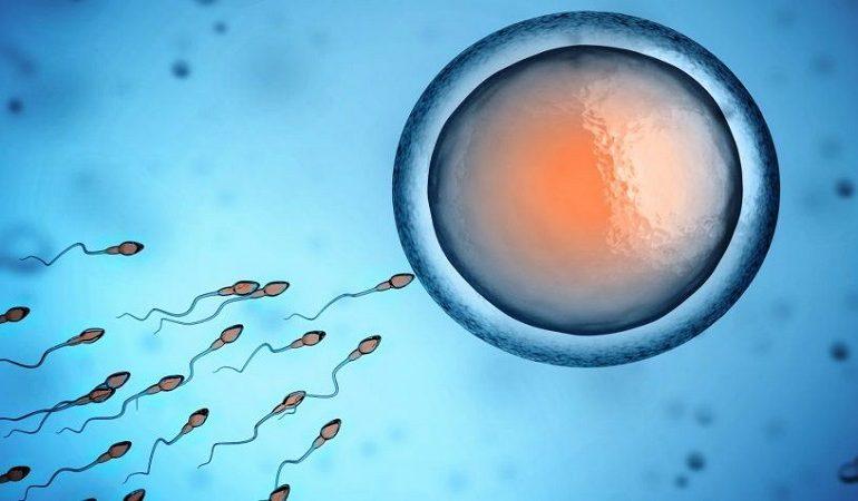 تلقیح داخل رحمی اسپرم IUI درمانی برای ناباروری