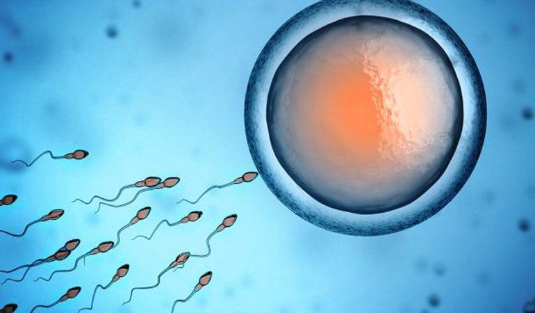 چند روز بعد از لقاح علائم بارداری ظاهر می شود